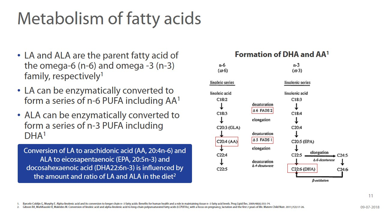 Beyond Brain Development - Understanding The Role Of DHA & ARA During Infancy slide 11