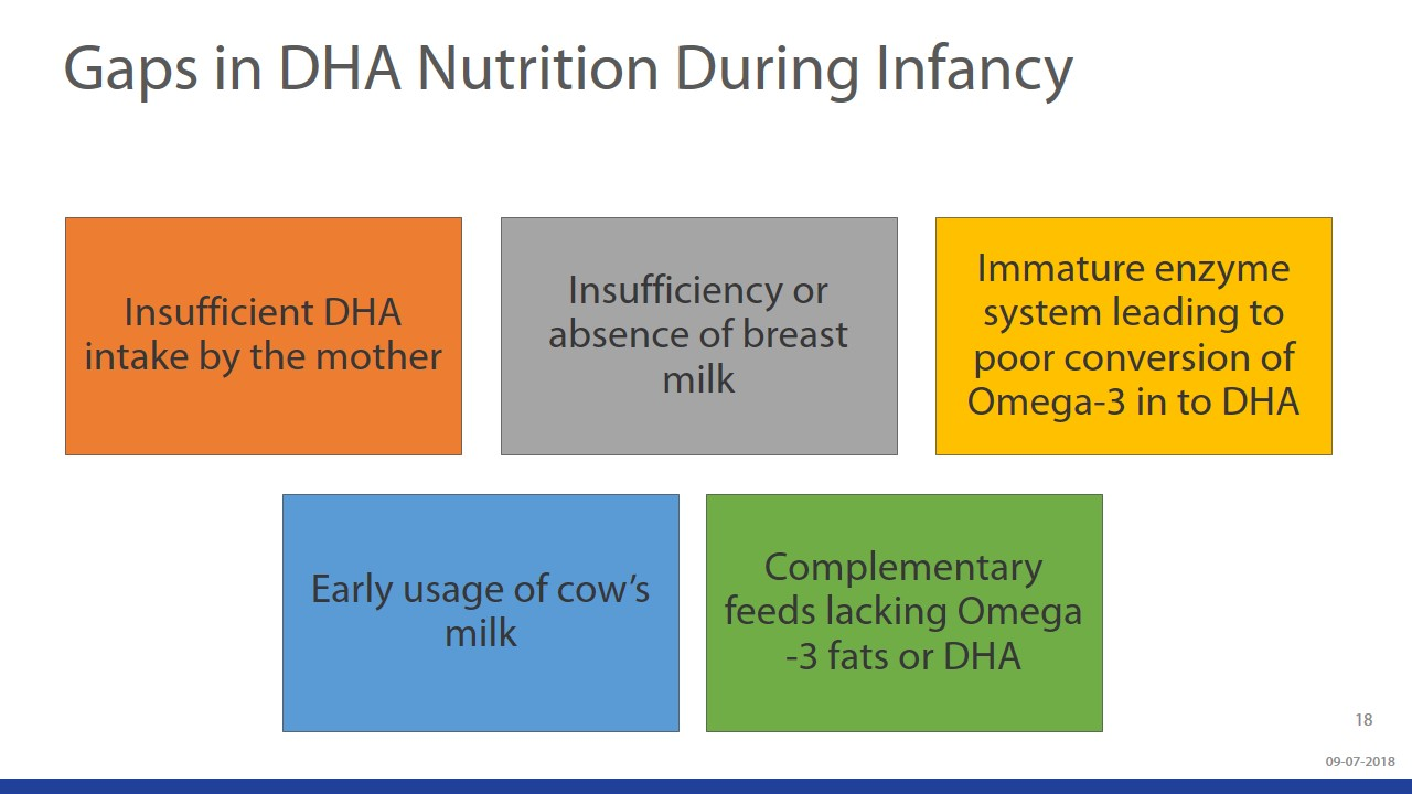 Beyond Brain Development - Understanding The Role Of DHA & ARA During Infancy slide 18